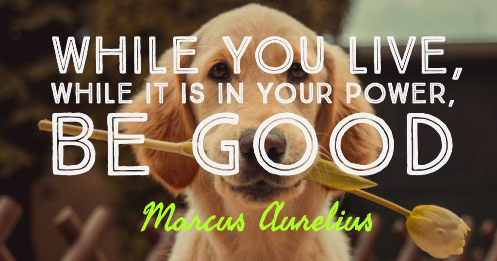 While you live, while it is in your power, be good - Marcus Aurelius